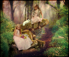 Woodland Faeries by 99shadows