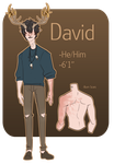 David Ref Sheet by Loxiv