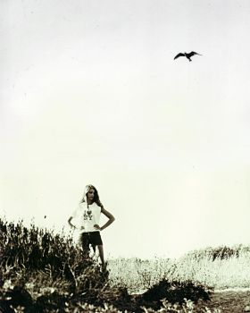 One day I'll fly away by 123Stella