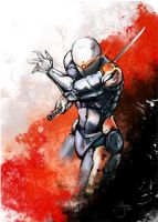 Gray Fox by Guidux92