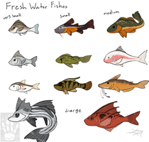 Fresh Water Fishes by TheDragonishCafe