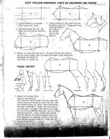 How to Draw A Horse by Flaming-Sunset