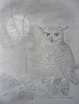 Owl in the moonlight by Spread-your-wings13