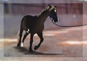 Lunging - Shadow by RQsf