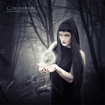 Secrets Of Witches by Corvinerium