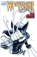 WONDERCON_WOLVERINE COVER by EricCanete