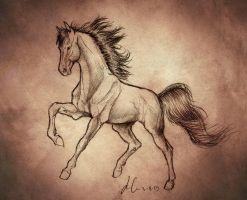 Horse sketch by h0wr