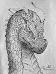 Dragon S by Camelibi
