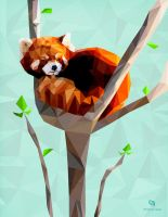 Red Panda by whikiko