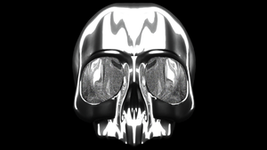Skull - Metal by temudjin1155