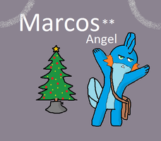 Marcos angel (Mudkip Christmas) by michaeldez