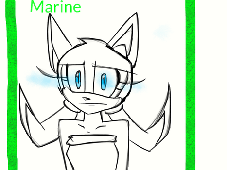 Random Sketch- Marine the raccoon by AnaSerraTails