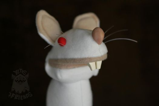 Albino Rat by roryboy