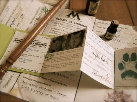 Harry Potter - Animagus License (b) by pocko-85
