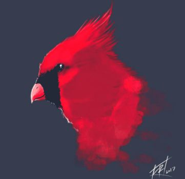 Cardinal by EarthsSaviorSonGoku