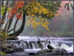 Misty Morning on the Peshtigo by papatheo