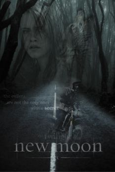 NEW MOON POSTER : wolves by annaGOESpanasonic