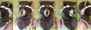Familiar raccoon. Probably from Space by Magpieb0nes