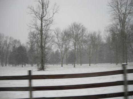 The Snow Drove Them Away by Dair-to-be-me