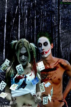 Harley Quinn and The Joker, Not your average day. by BlackDiamondDesigns