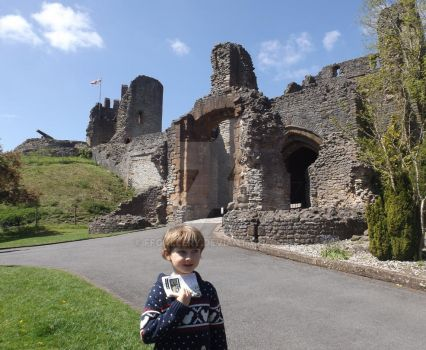 Henry at Dudley Castle by FFGallery