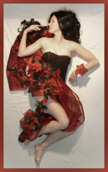 red passion 12 by Lisajen-stock