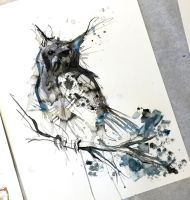 234- Shadow Owl by Lucky978