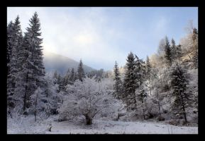 The Winter's Tale in Slovakia by LadybirdM