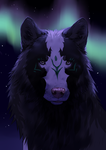 Northern Lights (YCH) by nihtgield