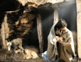 The Nativity by JadaCollectibles
