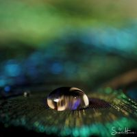 :blue without you: by Shum23