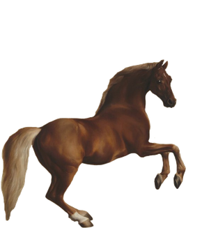 1800's Horse Jumping PNG by chaseandlinda