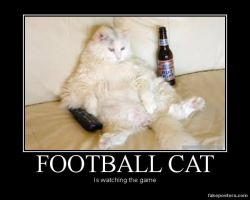 Football Cat by Tank93