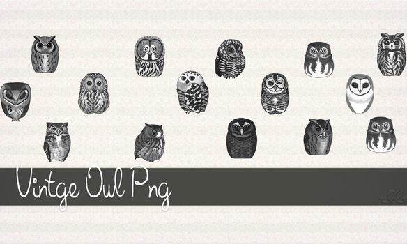 Vintage Owl Pngz by DaiiBiie