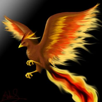Bird of Flame by AnbuShinobi