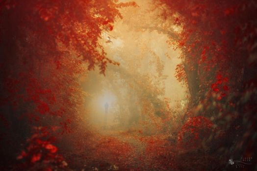 Welcome To The Jungle by ildiko-neer