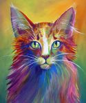 Colorful Cat 6 by San-T