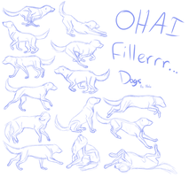 DOG Anatomy Study thing by DivineNymph