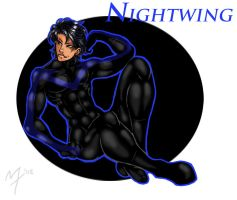Nightwing by m-t-copyright