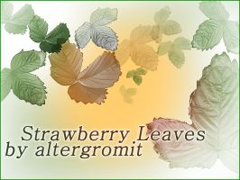 Strawberry Leaves Brush by altergromit