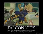 FALCON KICK by chereseaaurion8