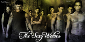 Wolf Pack banner by Bellelion