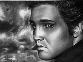 Elvis. The King. by reylia