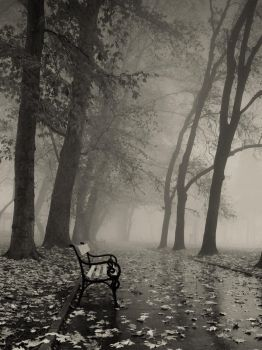 Bench by itan14