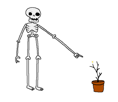 The Skeleton and the Flower Pot by holyphat1