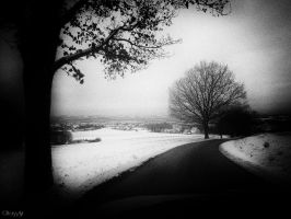 cold winter day by Weissglut