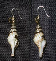 Cerith Earrings by ChocolateStarfire