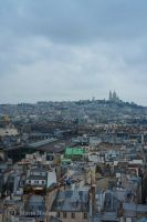 City of Paris by Moonbird9
