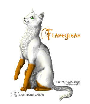 Flammenschein / Flamegleam by CourageOfWarrior
