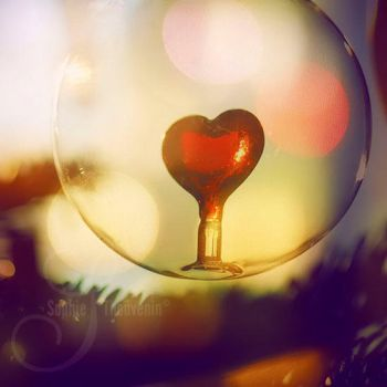 fragile heart by prismes